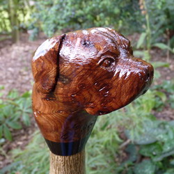 Hand Carved Animal Walking Sticks